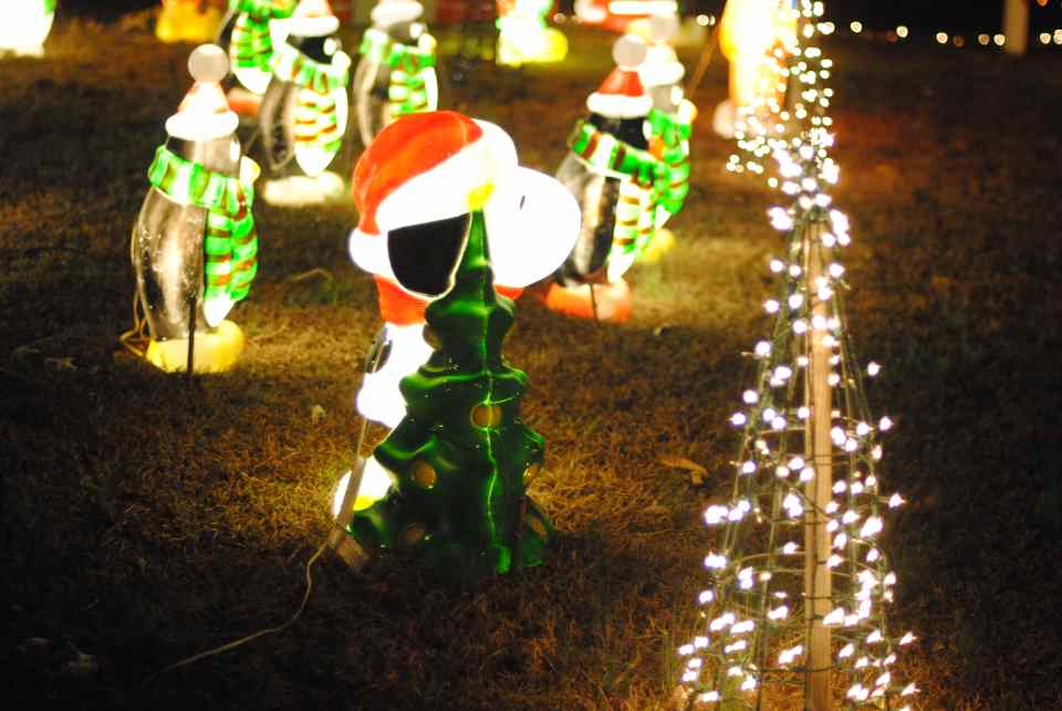 11 happyland christmas lights a raleigh tradition not to be missed - Best Christmas Lights In Nc