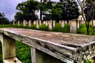 Oakwood Cemetery - Stories Behind The Headstones - featured